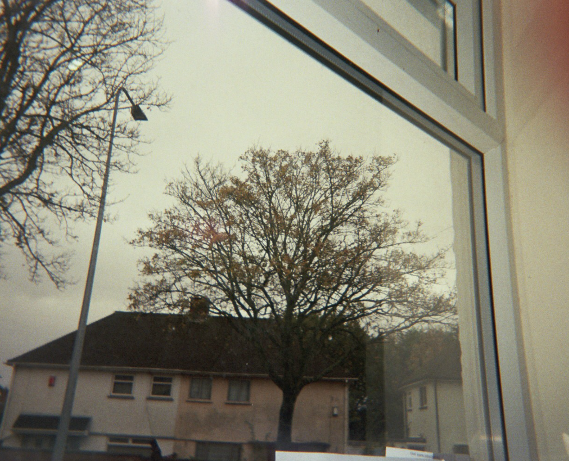 Project working with analogue film